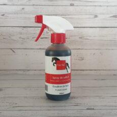 Holzteer-Spray